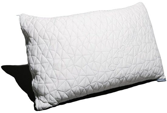 Coop Home Goods Memory Foam Pillows