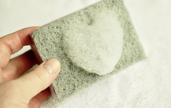 detergent sponge